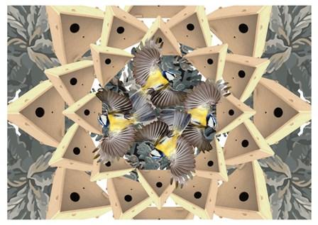 vacancesdigitales : Atelier pour oiseaux frileux