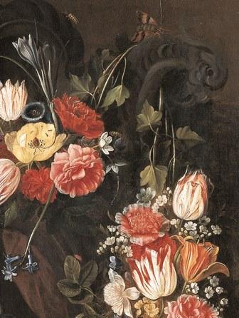 Musique au musée Faune et flore