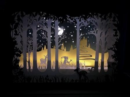Peau d'âne, le théâtre des ombres
