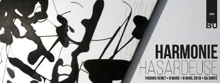 Harmonie hasardeuse - exposition et visite commentée par l'artiste Thomas Venet