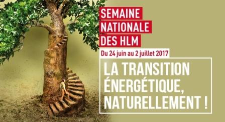 Semaine nationale des HLM : le concours de dessins s'expose à la médiathèque
