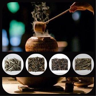 Découverte du thé japonais