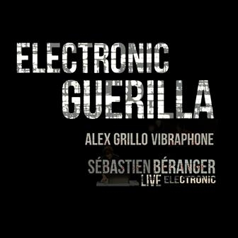 Electronic Guerrilla