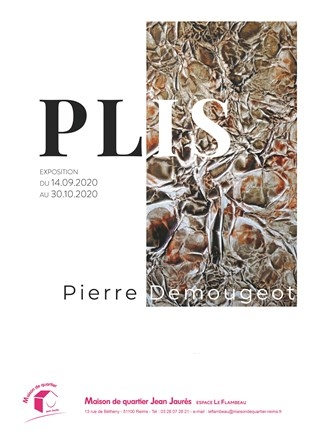 PLIS de Pierre DEMOUGEOT
