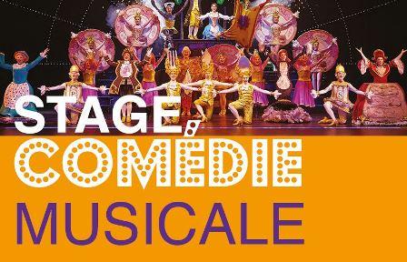 Stage de comédie musicale : La Belle et la Bête